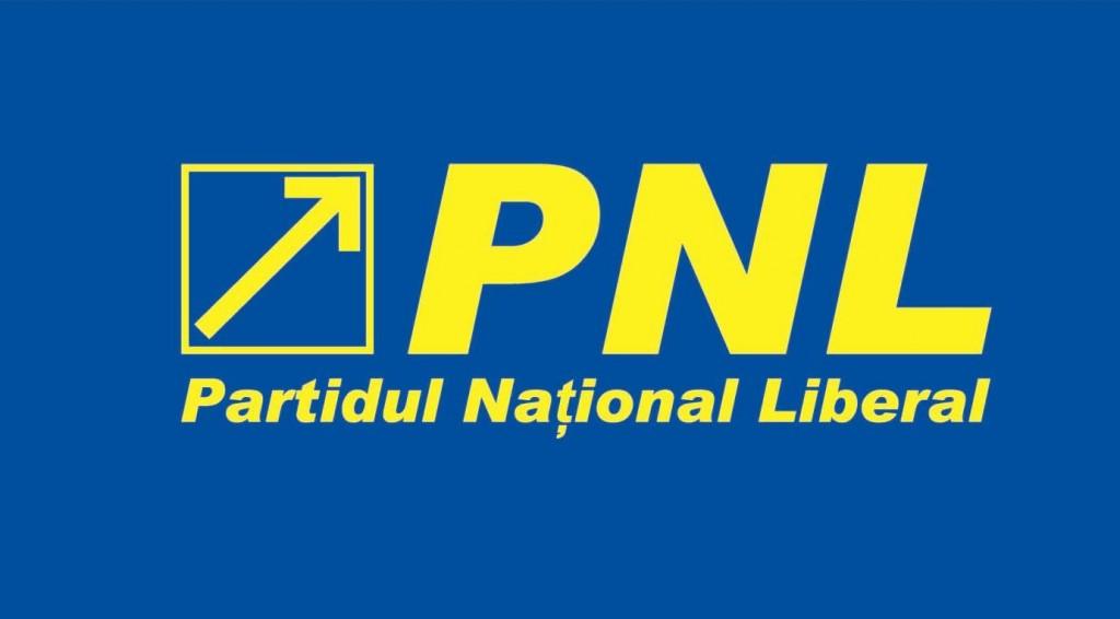 PNL va începe demersurile pentru demiterea Avocatului Poporului
