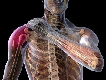 cauzele bolii coloanei vertebrale și articulațiilor cremă artropant cumpăra orle