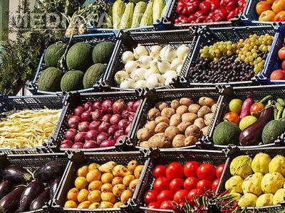 fructe-si-legume-ovidiu-iordachi