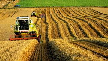 sindicalistii-din-agricultura-intentioneaza-sa-iasa-la-proteste-cu-revendicarea-de-a-se-modifica-politica-bugetar-fiscala