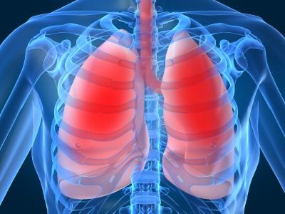 Pneumon